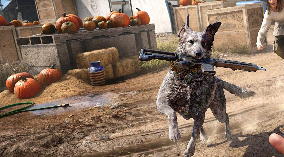 8 curiosità che abbiamo scoperto sul cane Boomer e sul lato nascosto della fauna selvatica di Far Cry 5